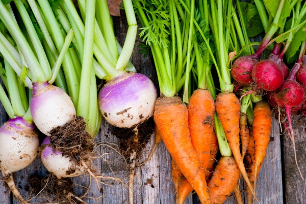 National-Eat-Your-Vegetables-Day-Facts-