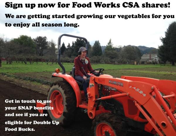 Food Works CSA share